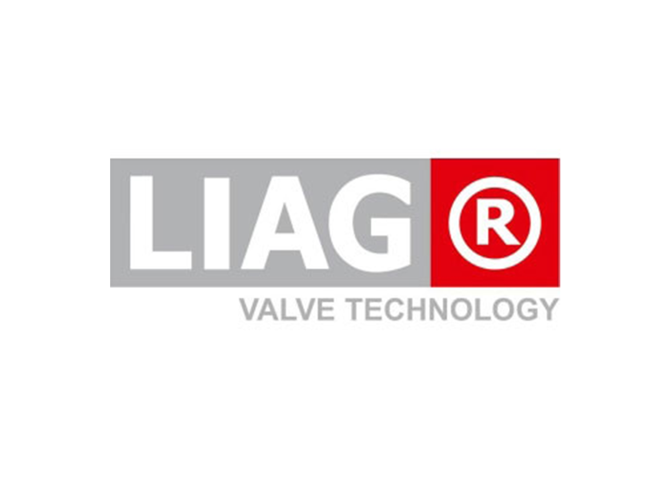 Laufer Valve Technology